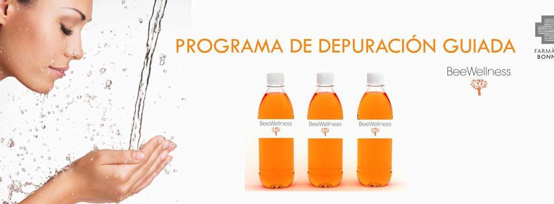 PROGRAMA COMPLETO DE DEPURACION BEEWELLNESS