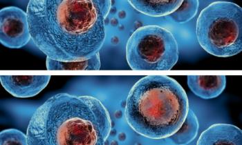 Regeneración celular con Excelvit