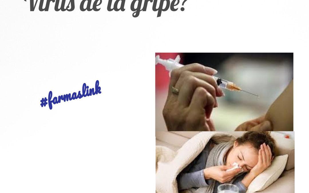 ¿Qué sabemos del Virus de la Gripe?