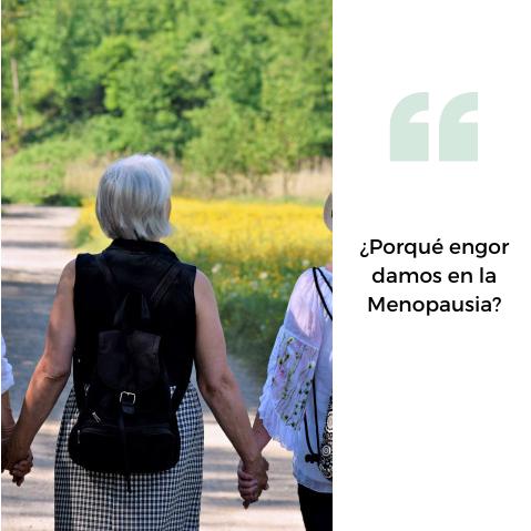¿Porqué engordamos al entrar en la Menopausia?