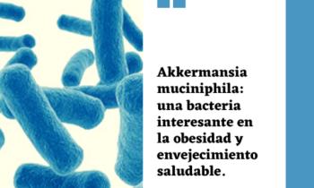Akkermansia muciniphila: una bacteria interesante en la obesidad y envejecimiento saludable.