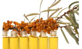 Aceites vegetales y CICA un plus para tu piel